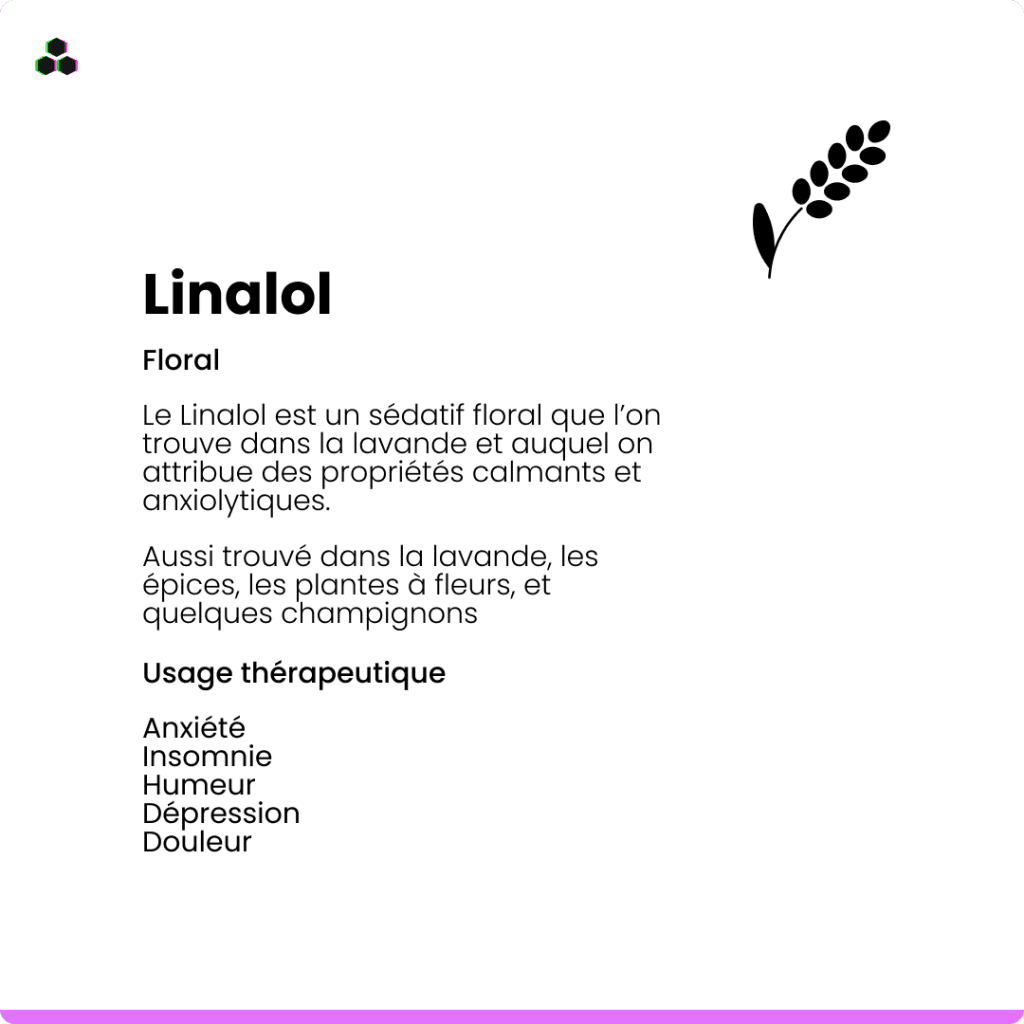 Le terpène du cannabis Linalol