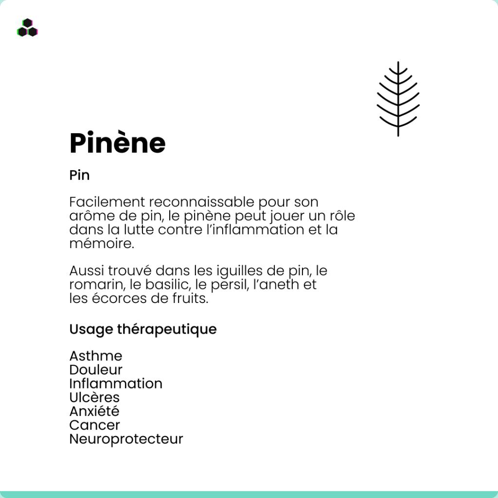 Le terpène du cannabis Pinène